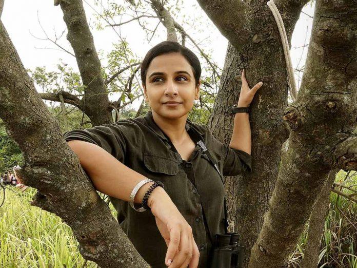 Vidya Balan's much awaited film Sherni Pics