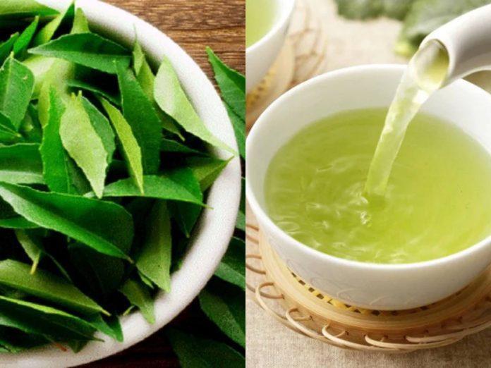 Curry Leaves Tea Benefits